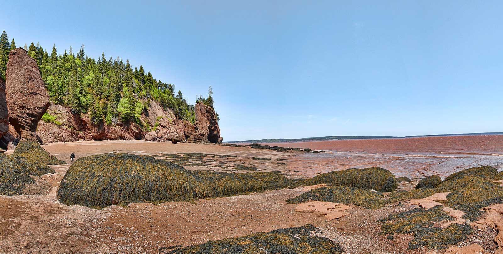 Hopewell rocks baia di Fundy.